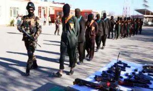 Eight terrorist killed