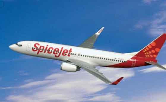 Spicejet profits