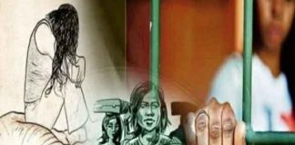 Human Trafficking Cases
