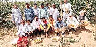 Pilibanga's sevadars did shramdaan in Kolayat Dham - Sach Kahoon