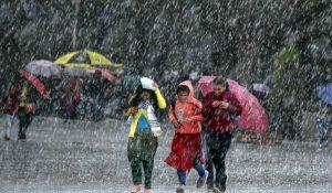 Rain-