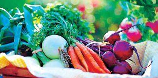 Eat Fresh Vegetables