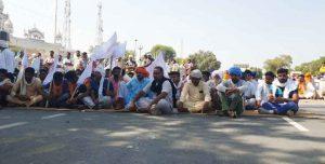 Farmers in Sirsa